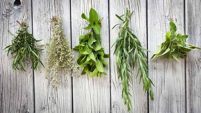 کدام روش خشک کردن سبزی بهتر است؟